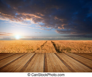 Stunning wheatfield landscape Summer sunset with wooden...