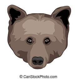 Bear Head - Vector illustration of bear head front view