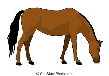 Horse - vector illustration of feeding brown horse