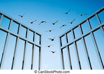 birds fly over the open gate, concept of success and freedom