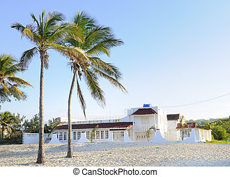 Beach house - House on tropical beach with coconut palm...