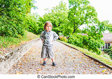 Autumn portrait of adorable toddler boy