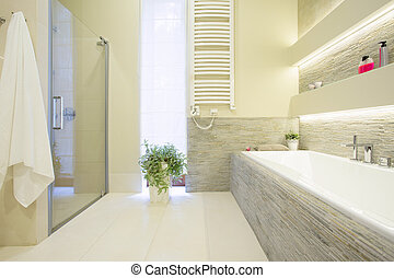 Bathtub and shower in spacious luxury bathroom