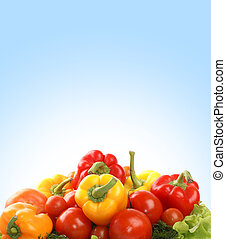 Vegetables on a blue background