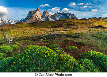 Lago Pehoe, National Park Torres del Paine in southern...