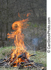Fire rabbit - Fire is in shape of rabbit. Nice illusion.