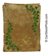 Old parchment with ivy borders - Image and illustration...