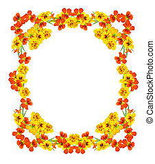 round frame with nasturtium flowers