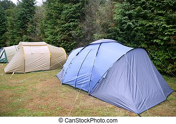 Camping tent field over green grass