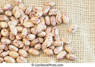 pinto beans - beautiful macro of colored pinto beans