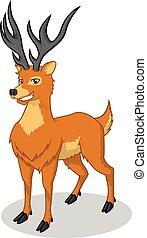 Deer Vector Cartoon Illustration