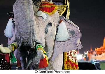 White elephant at Grand Palace, Bangkok, Thailand