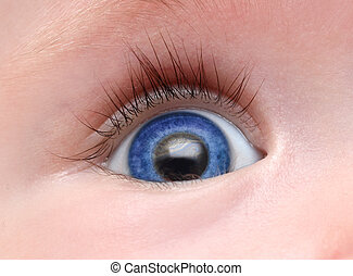 baby blue eye with long eyelash close-up