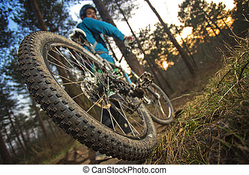 MTB cyclist on outdoor trail - The rear wheel of a mountain...