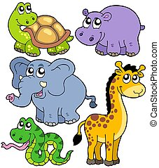 African animals collection 4 - isolated illustration.