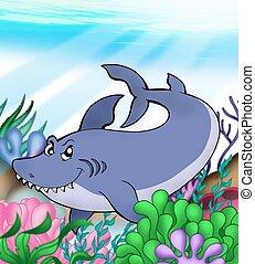 Big blue shark underwater - color illustration.