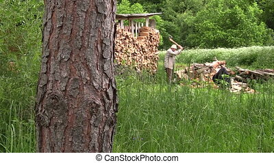 man chop willow wood - elderly villager work hard chop the...
