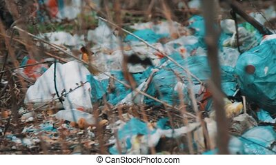 Trash on the dump - A lot of garbage, which lies on the...