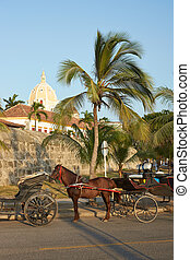 Horse Drawn Carriage - Horse drawn carriages used by...