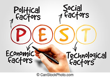 PEST Analysis Strategy for Business, Presentation, Website,...