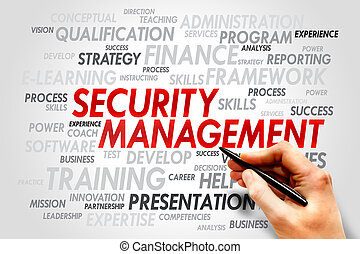 Security Management word cloud, business concept