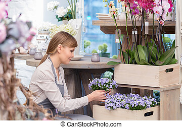 Florist by the flower pots - Fresh flowers just waiting for...