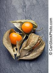 An open calyx, exposing the ripe fruit of physalis peruviana...