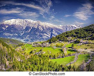 Sunny summer morning in the Italian Alps.
