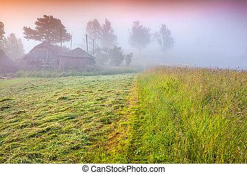 Haymaking in a Carpathian village. Ukraine, Europe