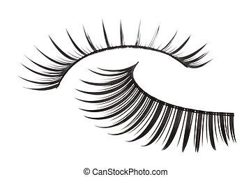 Artificial Eyelashes Isolated - Isolated macro image of...