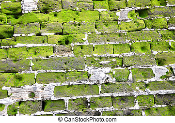 Fort Rotterdam, Makassar Indonesia - detailed mossy wall on...