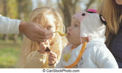 Family resting in nature, dad feeding baby fruit puree -...