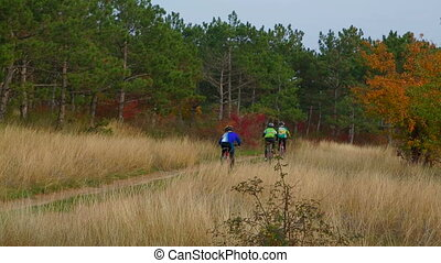 Three Cyclists Riding In Autumn Forest - Static shot of...