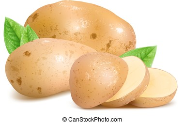 Potatoes with slices and leaves. Vector illustration