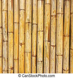 bambu, wall, ,