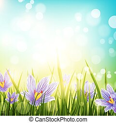 Crocus Flowers Meadow - Illustration of Abstract Natural...
