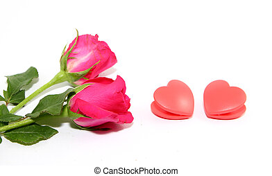 Roes and heart on white background