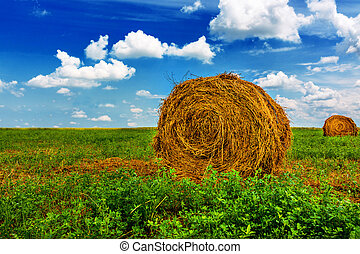Bale of Straw - Bale of straw, green field, blue sky.