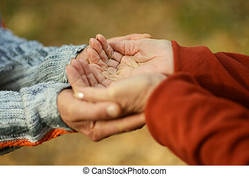 Couple of hands together over fallen leaves