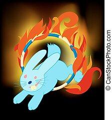 rabbit jumping through ring