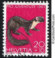 Pine marten - SWITZERLAND - CIRCA 1967: stamp printed by...