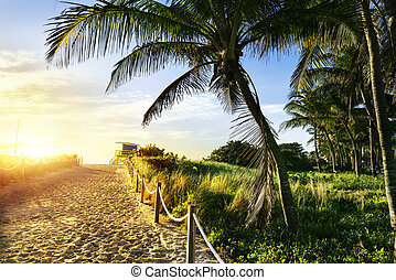 Lifeguard Tower, Miami Beach, Florida - Colorful Lifeguard...