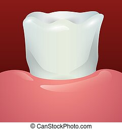 Dental design,vector illustration - Dental design over red...