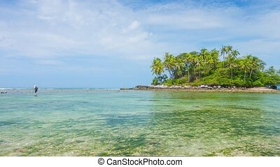 Photographer Wading for the Perfect Shot of Tropical Island...