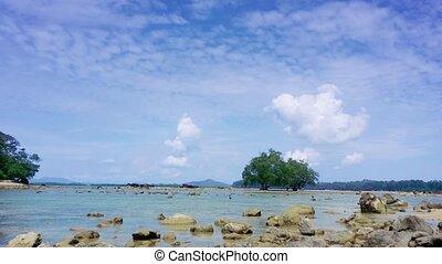 Tropical Thai Beach at Low Tide - Video 1080p - Mangroves...