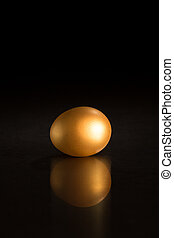 golden egg against black background - single golden egg...