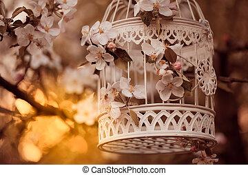 gabbia,  dÈcor,  -, uccello, Romantico