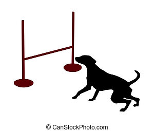 Dog agility: jump over hurdle