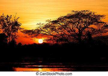 Sunset landscape on water field