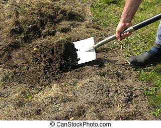 recorte, trabajo, jardín, pala, hombre